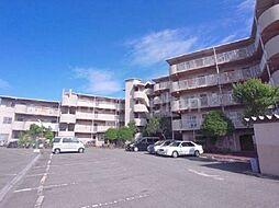 大阪府四條畷市雁屋北町の賃貸マンションの外観