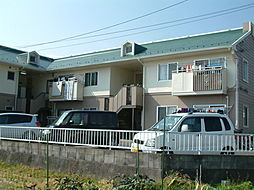 タウニー平良 B棟[1階]の外観