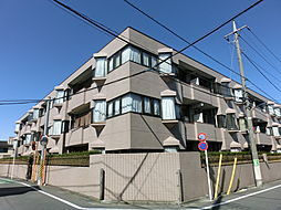 東京都練馬区北町7丁目の賃貸マンションの外観