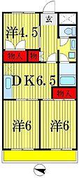 千葉県松戸市五香2丁目の賃貸マンションの間取り