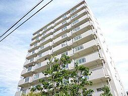 チェスターハウス川口[9階]の外観