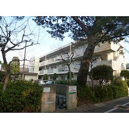 東京都杉並区善福寺4丁目の賃貸マンションの外観