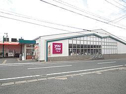 ゆめマート若園店(546m)