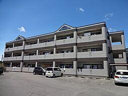 愛知県一宮市今伊勢町宮後字宮代の賃貸マンションの外観