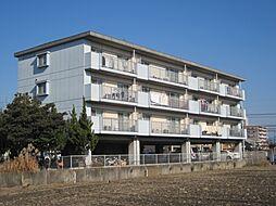第2祥栄ビル[203号室号室]の外観