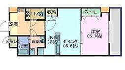 広島県廿日市市平良2丁目の賃貸マンションの間取り