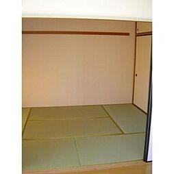 グランハイツ富士見[201号室]の外観