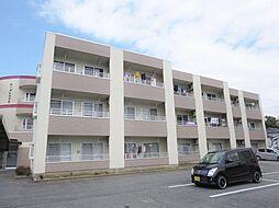 山梨県中央市下三條の賃貸マンションの外観
