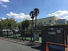 幼稚園武蔵みどり幼稚園まで419m