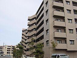 サーパス錦町通り[303号室]の外観