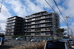 滋賀県野洲市妙光寺の賃貸マンションの外観