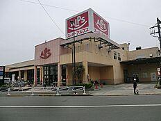 スーパーアルプス中野店 230m