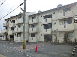 大阪府寝屋川市対馬江西町の賃貸アパートの外観