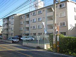 福岡県糟屋郡粕屋町長者原西3の賃貸マンションの外観