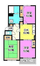 埼玉県新座市西堀2の賃貸マンションの間取り