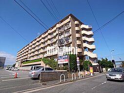 サンシティ箱崎九大前[7階]の外観