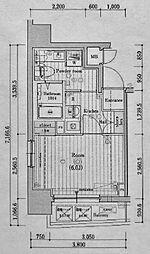 レグラス横浜メディオ[605号室]の間取り