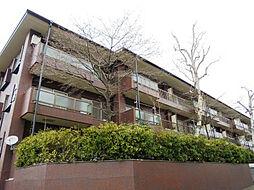 JR中央本線 阿佐ヶ谷駅 徒歩15分の賃貸マンション