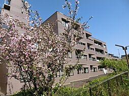 パルナスG[4階]の外観
