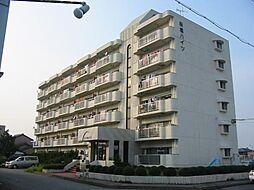 桜橋ハイツ[2階]の外観