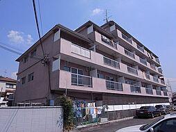 野崎マンション[2階]の外観
