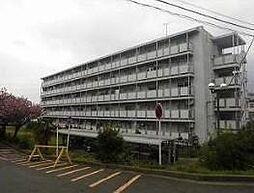 神奈川県横浜市旭区川井宿町の賃貸マンションの外観