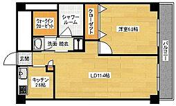 広島県広島市中区鉄砲町の賃貸マンションの間取り