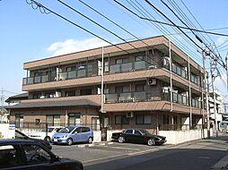 埼玉県川口市東領家5丁目の賃貸マンションの外観