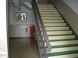 中丸ハイツ[4階]の外観