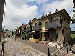 [テラスハウス] 茨城県つくば市若栗 の賃貸【/】の外観
