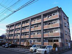 グランド・ステージ桜華 3階[305号室]の外観