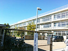 第1小学校 約500m