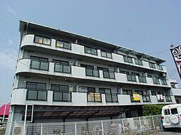 パームコート東山[4階]の外観