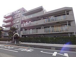 コスモ武蔵浦和プロシィード[4階]の外観
