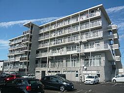 滋賀県東近江市八日市上之町の賃貸マンションの外観