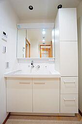 洗面化粧台交換済。水栓はシャワーへ切り替え可能です