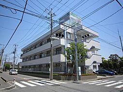 埼玉県川口市南鳩ヶ谷6丁目の賃貸マンションの外観