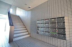 シャインハイツ入場[4階]の外観