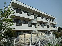岡山県倉敷市大内の賃貸マンションの外観