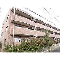 新潟県新潟市西区坂井東3丁目の賃貸マンションの外観
