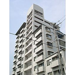大阪府大阪市平野区加美南3丁目の賃貸マンションの外観