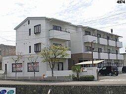 サーコート鷹子[206 号室号室]の外観