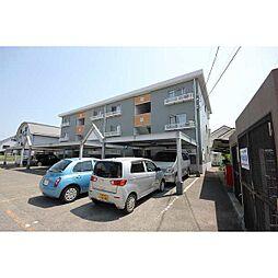徳島県徳島市昭和町6の賃貸マンションの外観