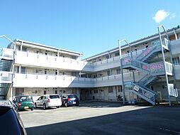 サンスカイまことマンション[208号室]の外観
