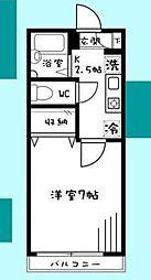 神奈川県相模原市南区上鶴間5丁目の賃貸アパートの間取り