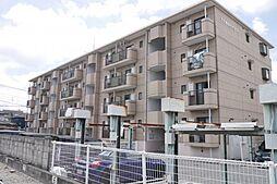 TOWAハイネス[4階]の外観