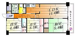 セザール吹田[6階]の間取り