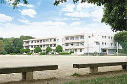 つくば市立手代木中学校(3729m)