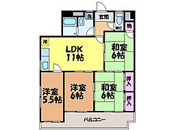 愛媛県松山市小栗1丁目の賃貸マンションの間取り