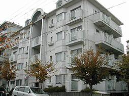 シティパレス学園前P-1[4階]の外観